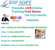 SAP FICO ONLINE TRAININIG AT ESF SOFT