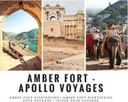 Amazing One Day Amber Fort Sightseeing Tour | Amber Fort Tour